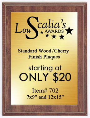 Cheap Award Plaque 702